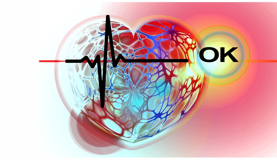 heart-665177_960_720