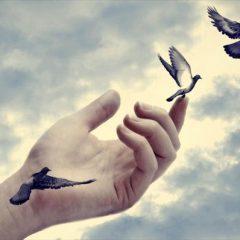 אקסס קונשסנס – גישה לתודעה גבוהה