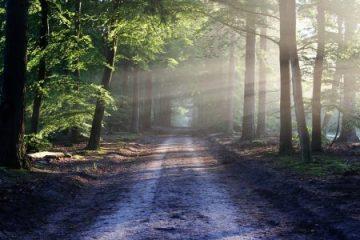 לעשות שינוי דרך המפתח – להסכים לאי ודאות